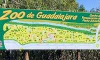 Mañana reabre sus puertas el Zoológico de Guadalajara con todas las medidas de seguridad e higiene frente al coronavirus