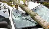 Daños por tormentas e inundaciones: OCU recomienda revisar las condiciones del seguro y reclamar