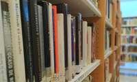 La biblioteca de Valdepeñas pone en marcha el servicio de préstamo 'Pide-recoge'