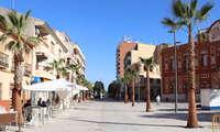 Vuelven a brotar en Manzanares los tilos trasplantados de la calle Toledo