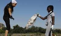 Más de 360 Héroes LIBERA han liberado de basuraleza 22 espacios naturales de Castilla-La Mancha