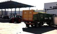 El Progreso de Villarrubia de los Ojos terminará la vendimia la próxima semana, con una cosecha de unos 60 millones de kilos