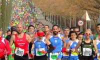 La Muy Heroica Media Maratón de Valdepeñas busca su propia imagen corporativa