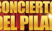 La Banda Municipal de Puertollanorendirá homenaje a los cuerpos y fuerzas de seguridad en su concierto del Pilar