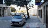 La decisión de retirar el ciprés del Paseo Cervantes de Socuéllamos fue tomada por unanimidad en una Comisión, tras un informe del técnico de jardinería y haciendo prevalecer la seguridad de las personas
