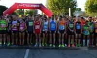 Más de 1.100 corredores seniors y otros 2.000 escolares protagonizarán las pruebas del 23ª Quixote Maratón de Castilla-La Mancha y 36º Campeonato de España Máster en Ciudad Real