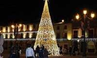 Medio centenar de arcos y un gran árbol iluminan la Navidad solanera