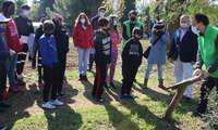 El Gobierno de Castilla-La Mancha presenta 'Educambientando 2021' para promover la sensibilización ambiental de los jóvenes ciudadrealeños