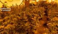 La Guardia Civil desmantela una organización dedicada al tráfico internacional de marihuana y cocaína