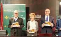 La Diputación de Albacete acoge la presentación de la programación Cultural de Primavera de Fuentealbilla