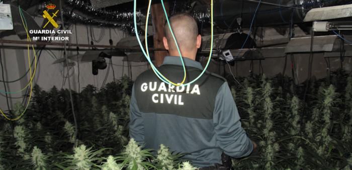 Detenidas 6 personas por  tráfico de drogas en Mora
