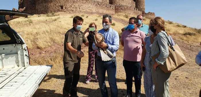 El Gobierno de Castilla La Mancha actualiza los planes de recuperación y conservación de sus especies protegidas