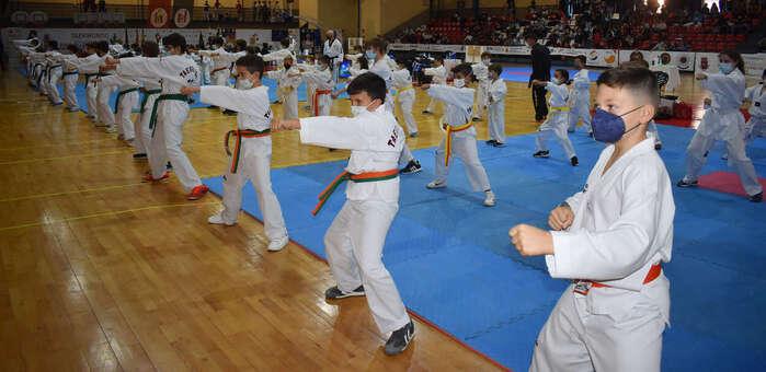"""800 participantes aseguran el éxito deportivo del V Open Internacional """"Don Quijote"""" de Taekwondo, Hapkido y Kumdo"""