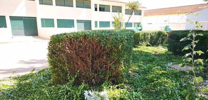 Los centros educativos de Villarrobledo acogen trabajos de limpieza y mantenimiento de cara a la vuelta a las clases