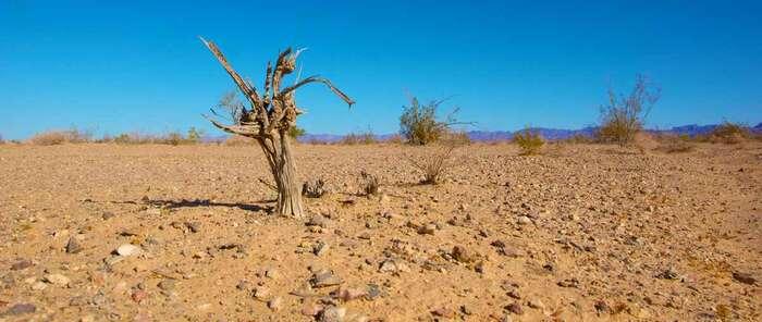 La preocupación por el clima empieza a hacer mella en los agricultores