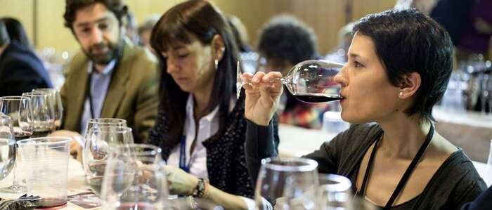 Enofusión acogerá una cata armonizada de una selección de vinos de Toledo organizada por la Diputación provincial de Ciudad Real