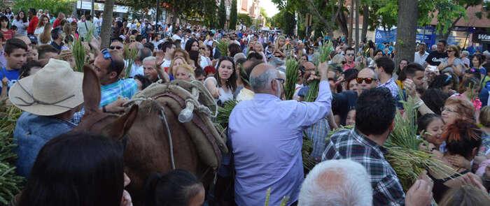 La tradición de la Fiesta de la Espiga vuelve a Azuqueca por San Isidro