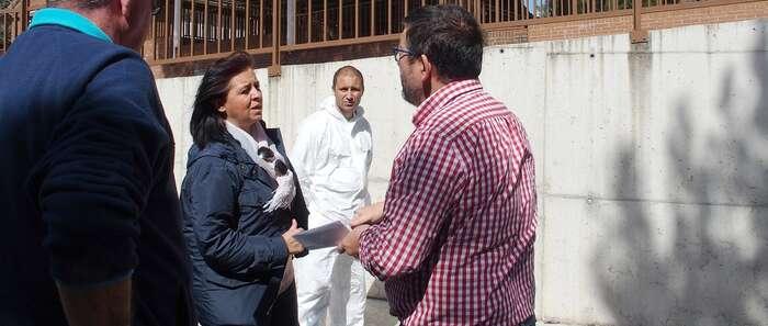 Ayuntamiento de Cuenca continúa las actuaciones de eliminación de la procesionaria en cuatro colegios y en toda la ciudad