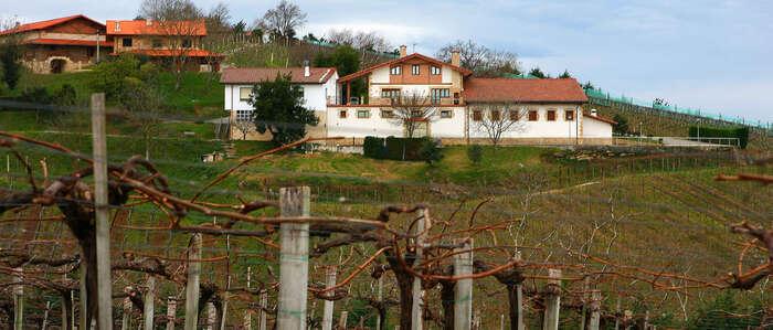 Una decena de bodegas productoras de txacoli participarán en FENAVIN 2017