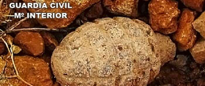 Localizada una granada de mano de la Guerra Civil en el yacimiento Vega del Azuer en Manzanares