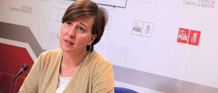 """Fernández: """"El PP se opone a la incorporación de los jóvenes al campo y a los 50 millones del Gobierno de García-Page para rejuvenecer el sector"""""""
