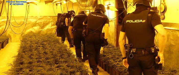 La Policía Nacional desmantela un laboratorio clandestino de heroína y una plantación de marihuana en una vivienda de Nambroca