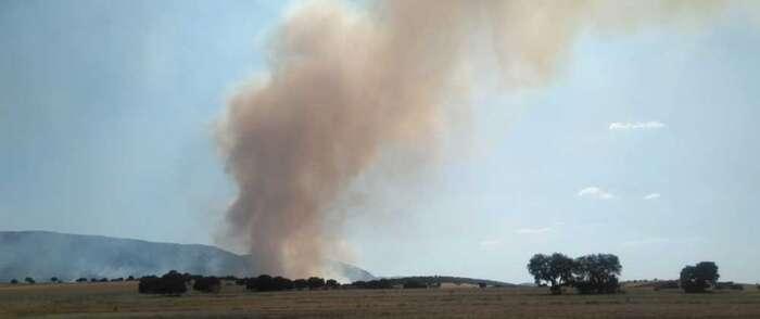 Controlado el incendio forestal en El Villar de Puertollano