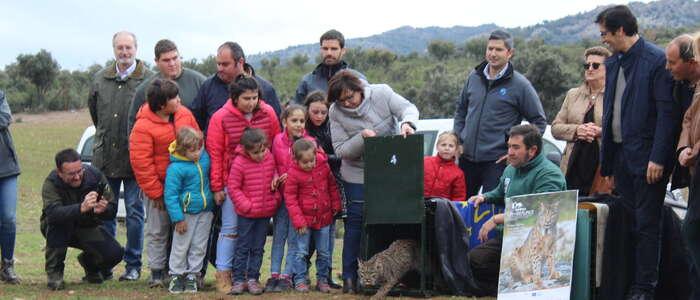 Escolares del CEIP 'Virgen del Valle' de Viso del Marqués asisten a la liberación de dos linces ibéricos
