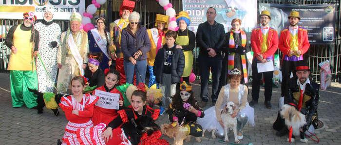 las mascotas miguelturreñas se disfrazan para celebrar el carnaval