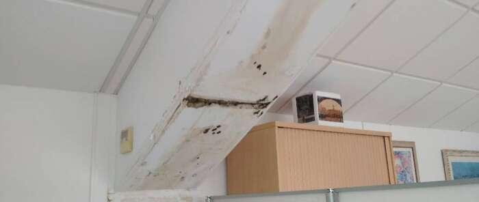 CSIF pide al ayuntamiento de Ciudad Real el arreglo inmediato de unas viejas goteras de la concejalía de Educación