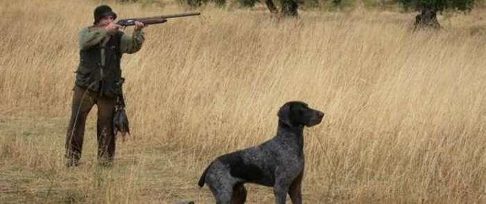 Fallece un hombre tras recibir un disparo en el pecho mientras se encontraba cazando en Villahermosa