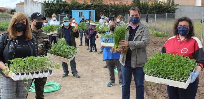 Llegan 2.500 nuevas plantas para cultivar en los huertos urbanos en Torrijos