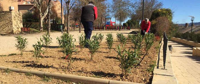 Nueva intervención especial en el parque del Lavadero de Azuqueca de Henares