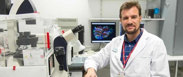 Científicos del Hospital Nacional de Parapléjicos investigan una aplicación con células madre para curar las úlceras por presión