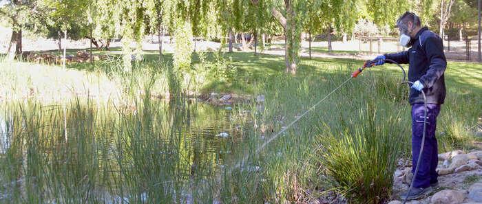 El Ayuntamiento de Azuqueca de Henares intensifica la campaña contra los mosquitos