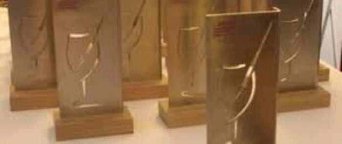 Los Premios de la AEPEV se entregarán en Valdepeñas