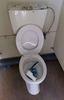 imagen de Nuevos actos vandálicos en los baños de la zona de ocio habilitada por el Ayuntamiento de Quintanar