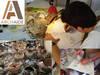 imagen de ArchAIDE, la App capaz de reconocer cerámica de yacimientos mediante una foto del móvil
