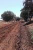 imagen de Ultiman el primer tramo de la ruta verde que discurre por el antiguo trazado de tren de vía estrecha que cruzaba el término municipal