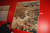 imagen de 'Los Alcornocales' gaditanos de Pedro Lobato Hoyos, primer premio Fermín Santos