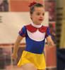imagen de EL Campeonato de España de Gimnasia Rítmica para personas con discapacidad intelectual regresa a Albacete