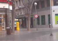 Imagen y Video Fco. García