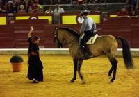 Imagen: La mágia de los caballos en el espectáculo ecuestre Al Alba