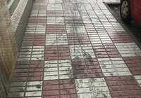 El PP lamenta que, en plena pandemia, se hayan triplicado las reclamaciones de los vecinos por la falta de limpieza y desinfección en las calles